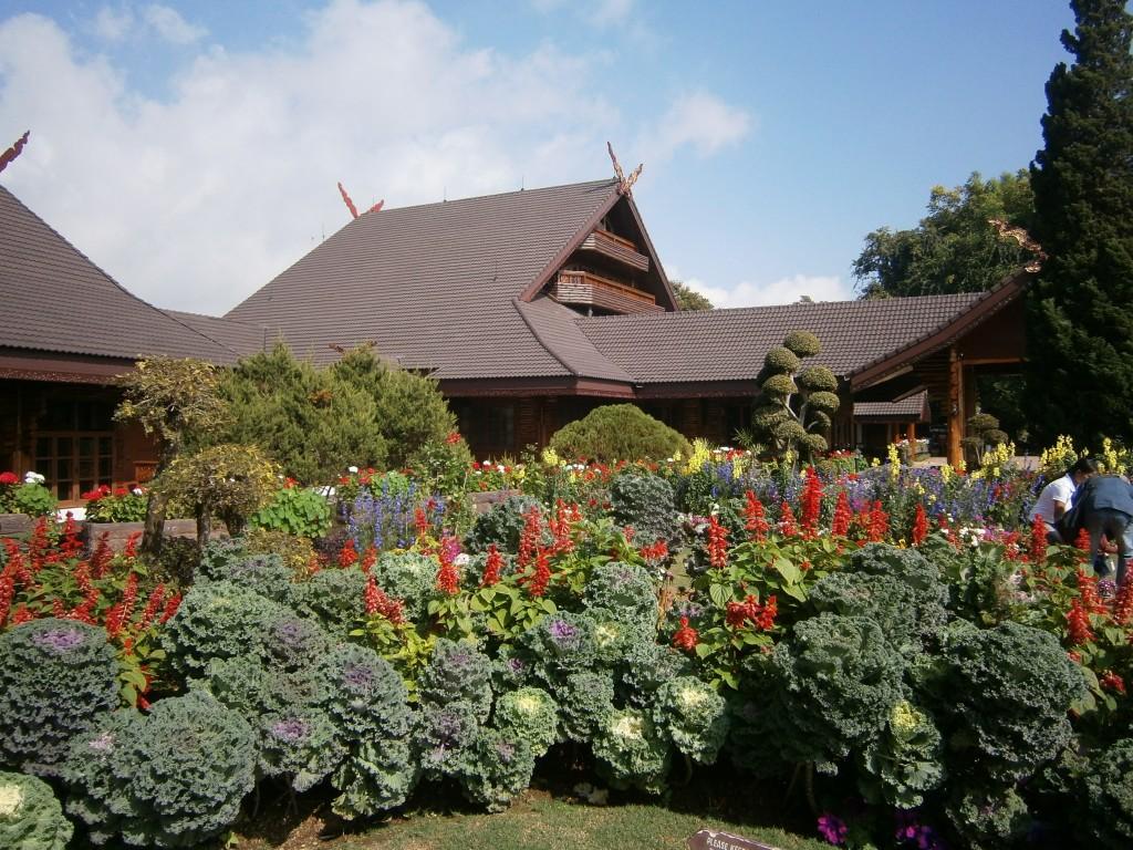 Chiang Rai Doi Tung P1060044