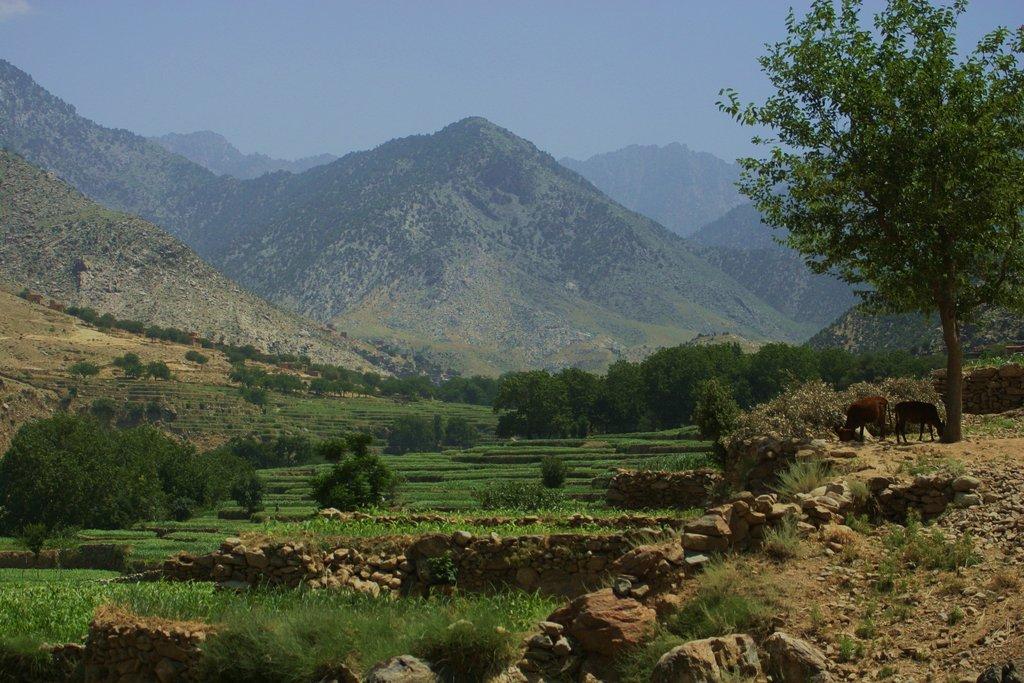 Afghanistan-Wallpapers-