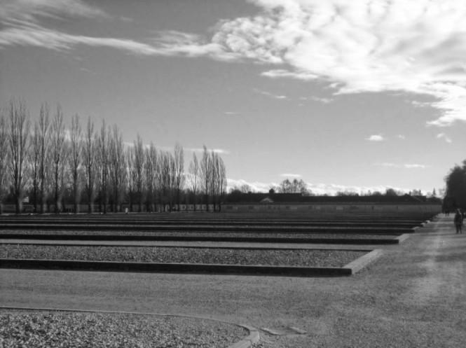 campo concentramento (4)